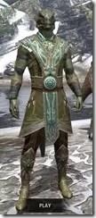 Treethane's Mosaic Jerkin Argonian Male Front