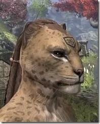 Alftand Glacial Face Tattoos Khajiit Female Side