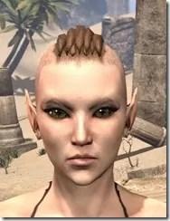 Bronze Color Eyeshadow Fermale Front