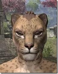 Bronze Color Eyeshadow Khajiit Fermale Front