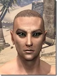 Bronze Color Eyeshadow Male Front