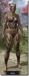 Dwarven Centurion Body Tattoos Khajiit Female Front