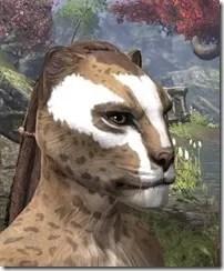 Ghost Goblin Face War Paint Khajiit Female Side