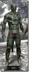 Meridian Radiance Body Tattoos Argonian Male Front