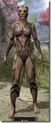 Meridian Radiance Body Tattoos Khajiit Female Front