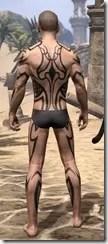 Meridian Radiance Body Tattoos Male Rear