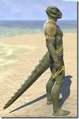 Meridian Sunburst Body Tattoos Argonian Male Right