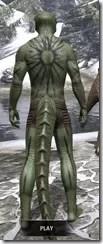 Meridian War Burst Body Markings Argonian Male Rear