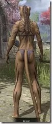 Meridian War Burst Body Markings Khajiit Female Rear