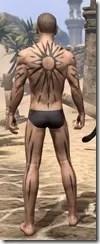 Meridian War Burst Body Markings Male Rear