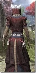 Jode & Jone Light - Khajiit Female Robe Close Rear