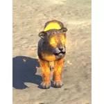 Meridian Sabre Cub