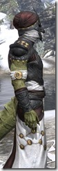 Pellitine Light - Argonian Male Robe Close Side