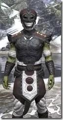 Pellitine Light - Argonian Male Shirt Close Front