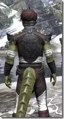 Pellitine Light - Argonian Male Shirt Close Rear