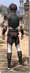 Pellitine Light - Male Shirt Rear
