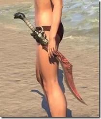 Pellitine Sword 1