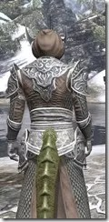 Meridian Homespun - Argonian Male Robe Close Rear