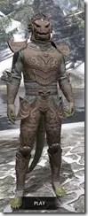 Pellitine Iron - Argonian Male Front