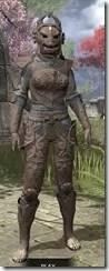 Pellitine Iron - Khajiit Female Front