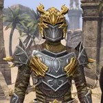 Ancient Dragon Hunter Armor