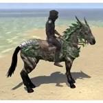 Legendary Dragon Horse
