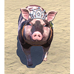 Sovereign Sow