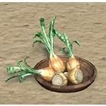 Solitude Bowl, Winter Onions