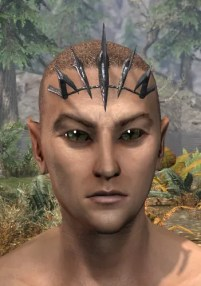 Blood Scion Razorguard - Male Front