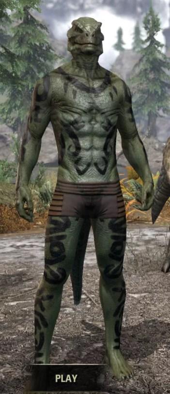 Forsaken Sacrifice Body Markings - Argonian Male Front