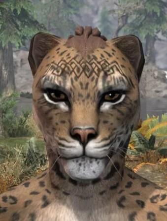 Karthwatch Guardian Face Tattoo - Khajiit Female Front