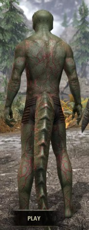 Thrall's Arterial Map Body Marks - Argonian Male Rear