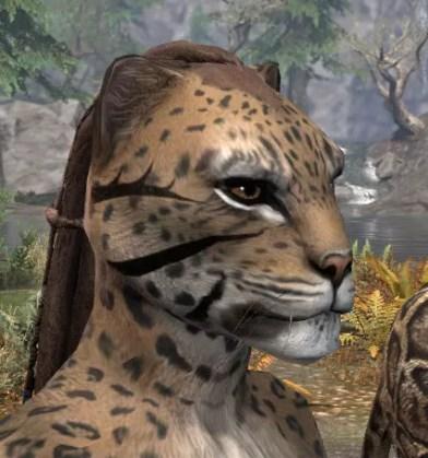 Umbral Snarl Face Markings - Khajiit Female Side