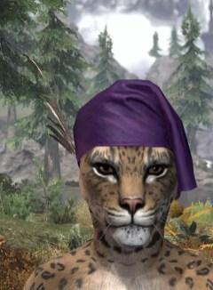 Wayrest Canto Chapeau - Khajiit Female Front