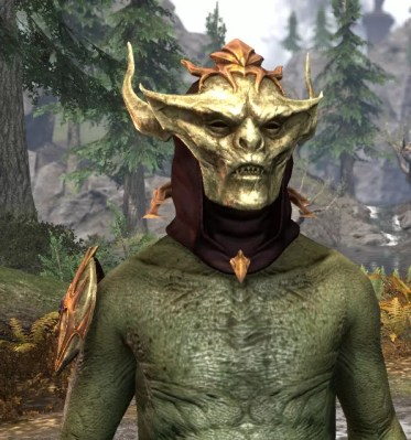 Lady Thorn - Argonian Male Front