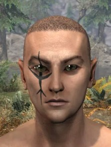 Morthal Champion Face Markings - Male Front