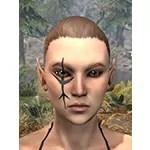 Morthal Champion Face Markings