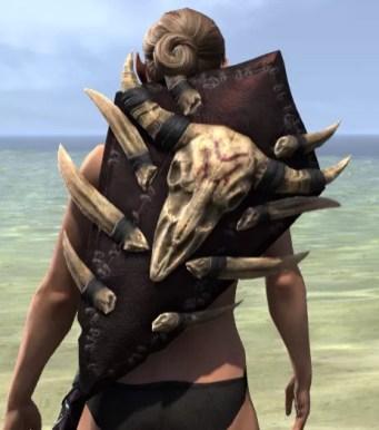 Ancestral Reach Shield 1