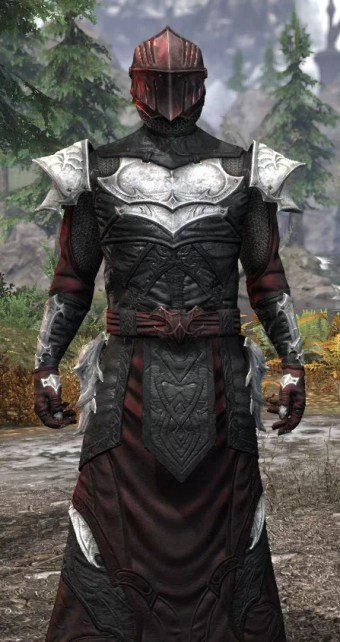 Nighthollow Light - Argonian Male Robe Close Front