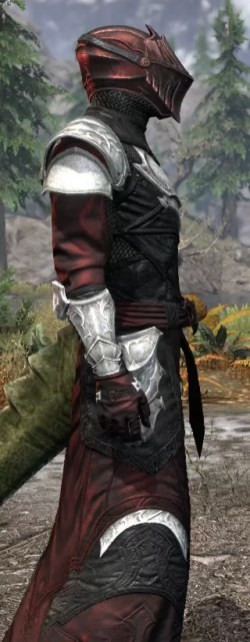 Nighthollow Light - Argonian Male Robe Close Side