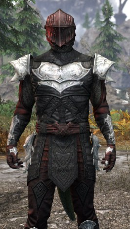 Nighthollow Light - Argonian Male Shirt Close Front