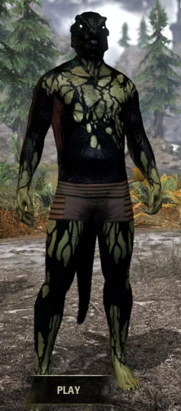 Void Pathosis - Argonian Male Front