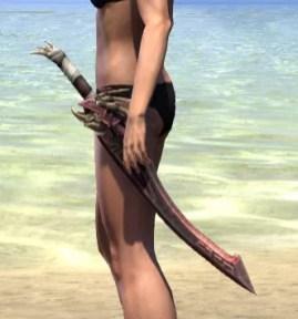 Wayward Guardian Sword 1