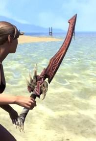 Wayward Guardian Sword 2
