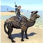 Akaviri Potentate Camel