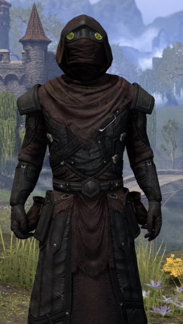 True-Sworn Light - Argonian Male Robe Close Front
