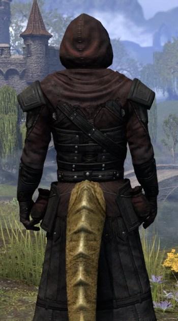 True-Sworn Light - Argonian Male Robe Close Rear