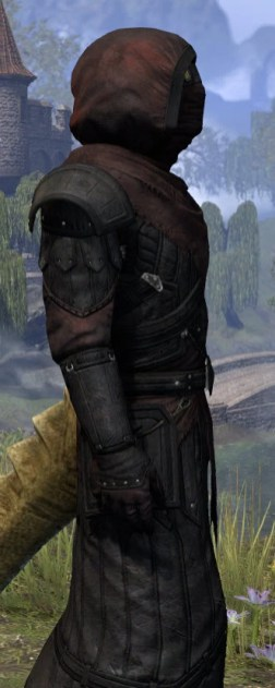 True-Sworn Light - Argonian Male Robe Close Side