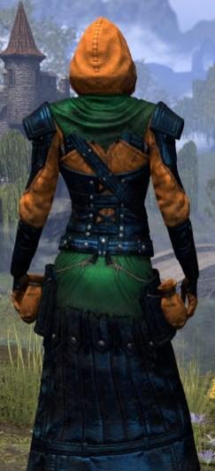 True-Sworn Light - Dyed Robe Close Rear
