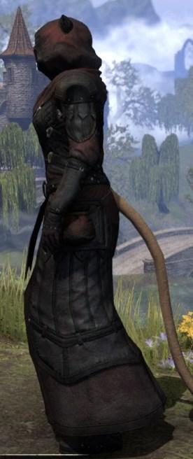 True-Sworn Light - Khajiit Female Robe Side